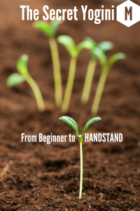 The Beginner's Blog-7