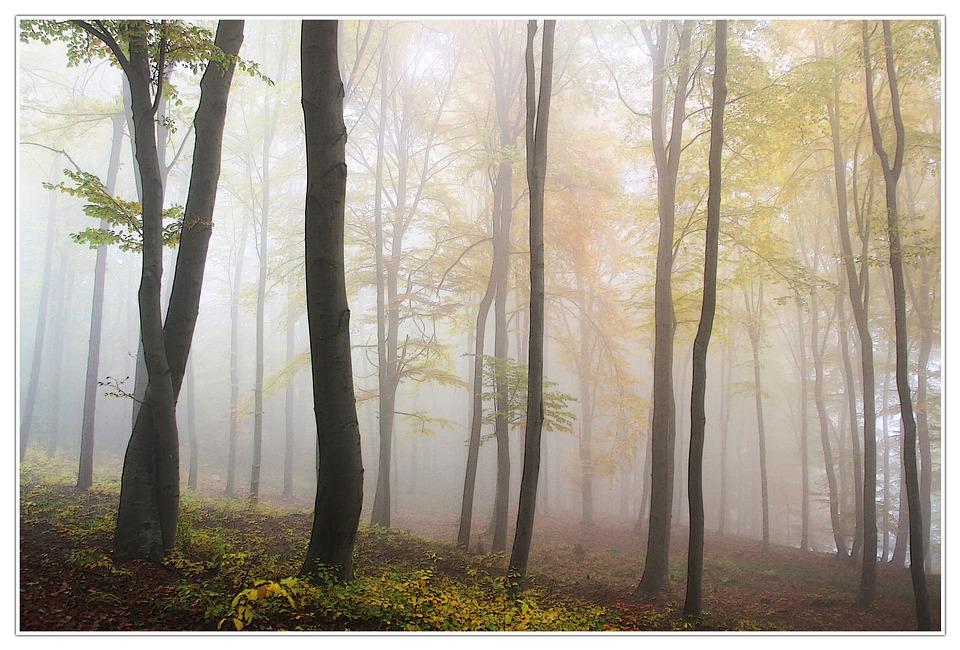 autumn-chilly