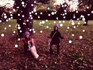 snow-pine-cones