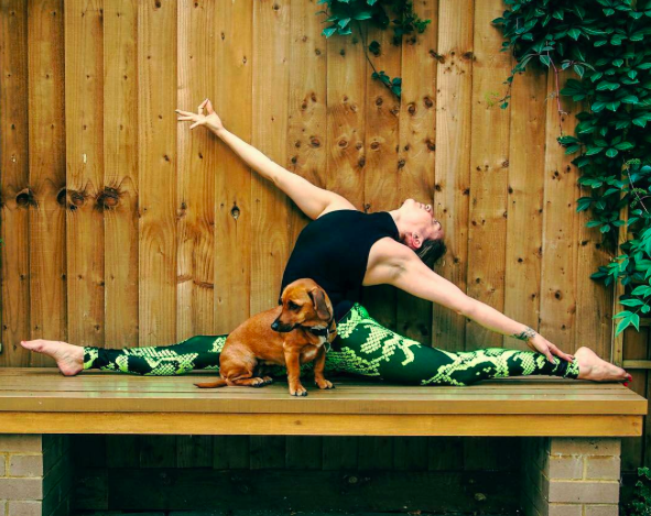 yoga pants the present of yoga