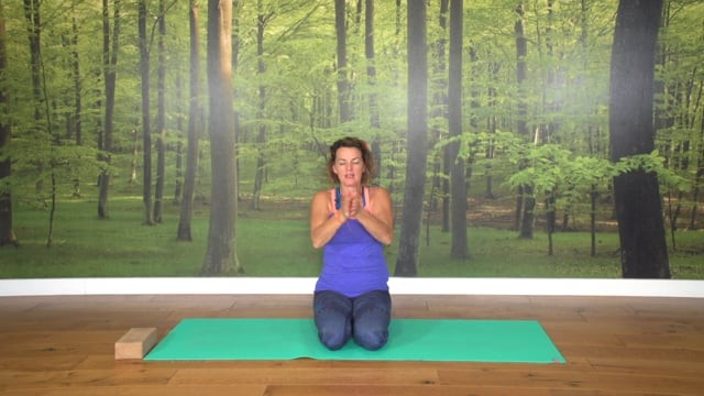 Rainbow Vinyasa Yellow(3): Solar Yoga Flow
