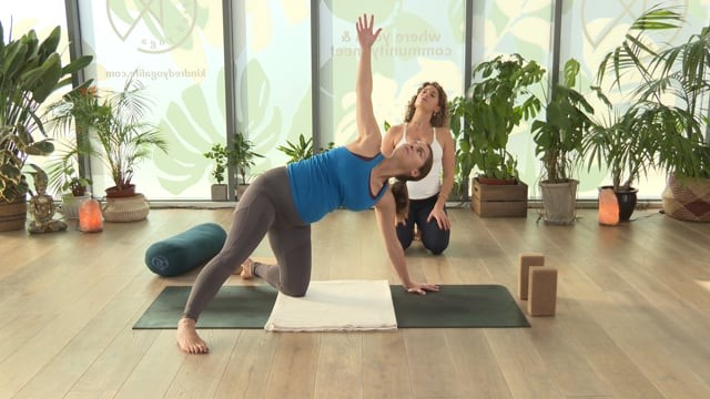 Second Trimester Vinyasa Flow