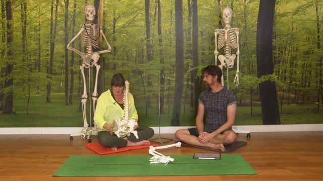 Hip Replacement: How Yoga can Help