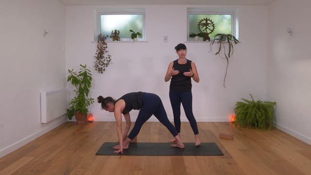 Jivamukti Yoga Reset