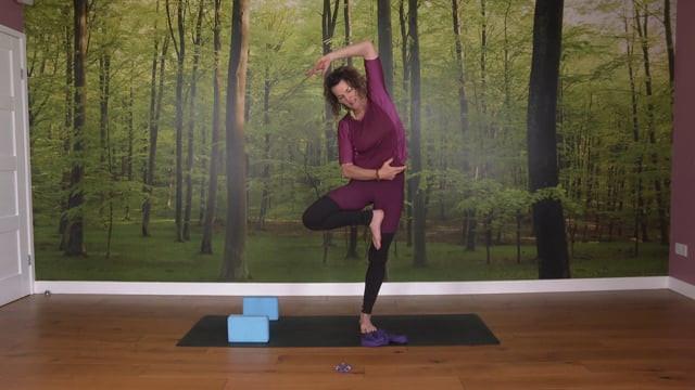 Somatics & Yoga Inspired by Nature