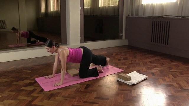 Pregnancy yoga for lower back and pelvis