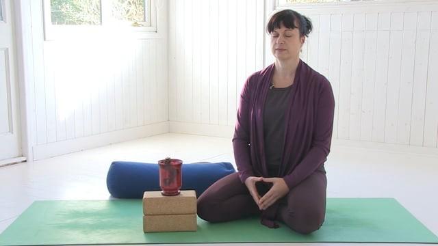 Gratitude Practice & Meditation