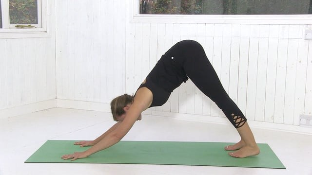Vinyasa SOS: Intermediate To Advanced