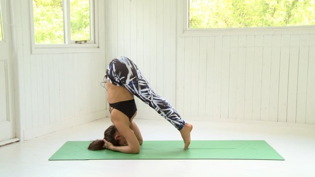 Headstand 10: Hip Lifts