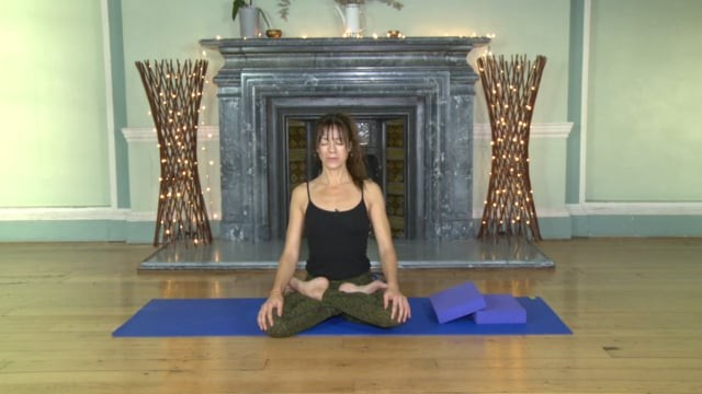 Lotus Focused Vinyasa Flow