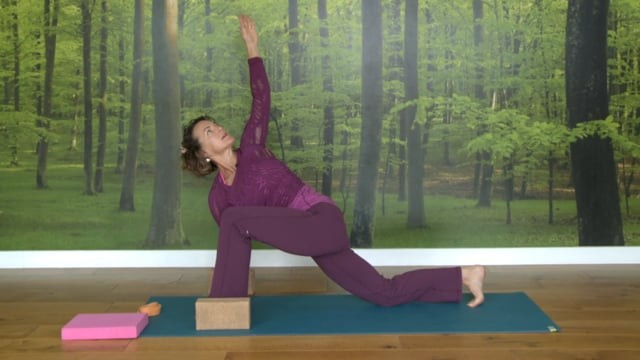 Gentle Vinyasa: Butterfly Metamorphosis